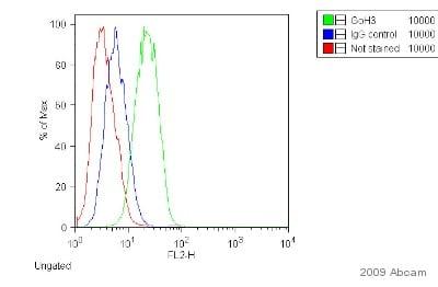 Flow Cytometry - Donkey anti-Rat IgG H&L (PE) (ab7008)