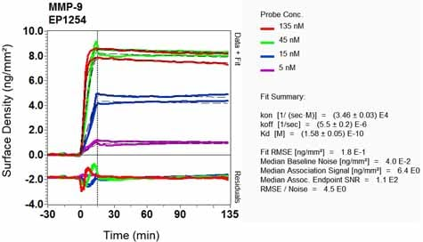 OI-RD Scanning - Anti-MMP9 antibody [EP1254] (ab76003)