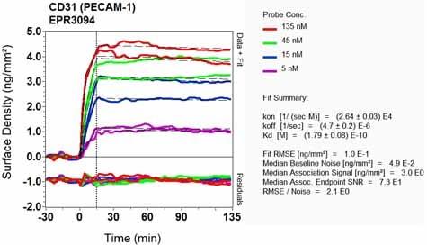 Other - Anti-CD31 antibody [EPR3094] (ab76533)