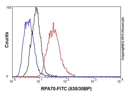 Flow Cytometry - Anti-RPA70 antibody [EPR3472] (ab79398)