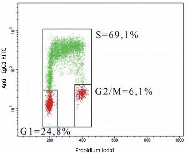 Flow Cytometry - Anti-BrdU antibody [MoBu-1] (ab8039)