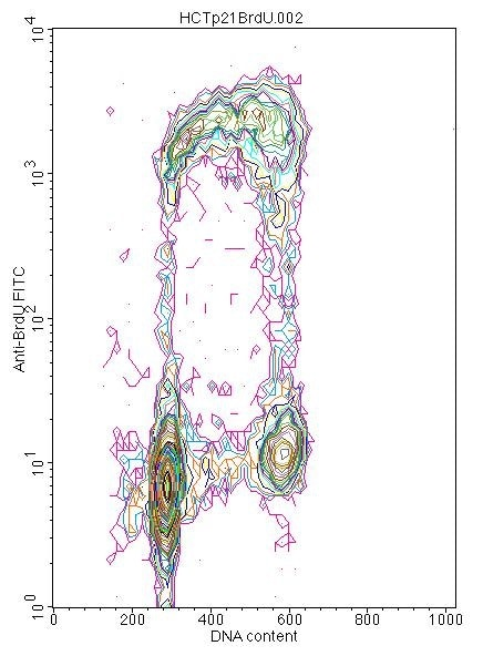 Flow Cytometry - Anti-BrdU antibody [IIB5] (ab8152)