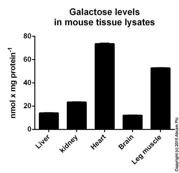 Functional Studies - Galactose Assay Kit (ab83382)