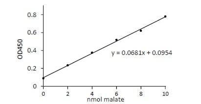 Example of Standard Curve
