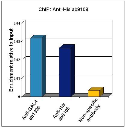 ChIP - Anti-6X His tag® antibody - ChIP Grade (ab9108)