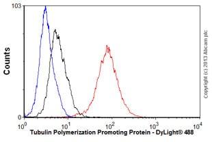 Flow Cytometry - Anti-Tubulin Polymerization Promoting Protein antibody [EPR3316] (ab92305)