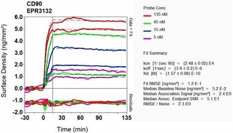 OI-RD Scanning - Anti-CD90 / Thy1 antibody [EPR3132] (ab92574)
