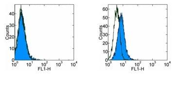 Flow Cytometry - FITC Anti-PD1 antibody [RMP1-30] (ab93579)