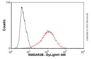 Flow Cytometry - Anti-NMDAR2B antibody [N59/36] (ab93610)