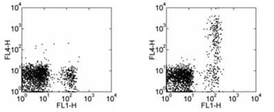 Flow Cytometry - APC Anti-CD23 antibody [EBVCS2] (ab95573)