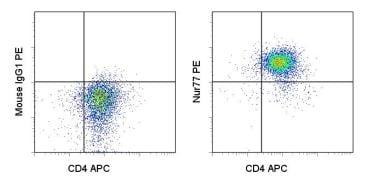 Flow Cytometry - PE Anti-NUR77 antibody [12.14] (ab95659)