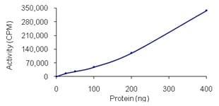 Functional Studies - Recombinant human PAK4 protein (ab96405)